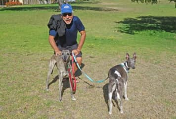 Tilman with Dobby and Charlie, we cared for in Mullaloo/PerthPerth