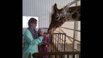Meet Buddy the giraffe, the surviving twin of a rare birth in Texas.  Named after my brother that passed away in 2011 and my mom is the little gal, next to my daughter.