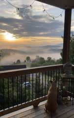 Sip coffee on the deck while listening to the birds and watching the sunrise (Juneau may join you)!