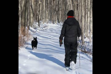 The winter hiking here is fantastic. The famous Bruce trail is only 3km away.