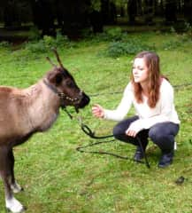 Ali and a baby reindeer