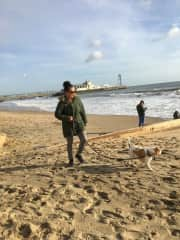Bertie the Beagle in Bournemouth.