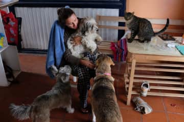 Lucie with all her friends, Quito, Ecuador pet-sit 2017