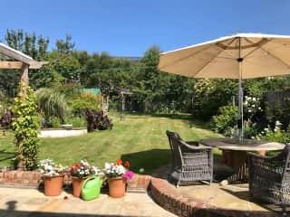 Summertime in our back garden