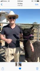 At my sister's Alpaca ranch in Toowoomba