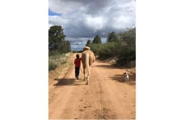 Morgan walking Sundance and Butah