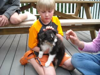 Our son Forrest choosing Siena as the right dog for our family