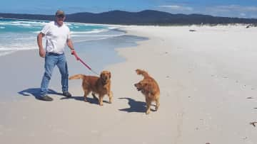 Daisy, Indie and Martin (husband)