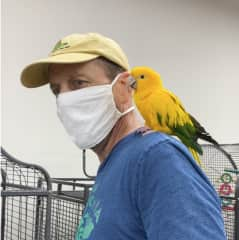 One of our great pleasures during the pandemic has been getting to know the exotic birds at Parrot Stars, an exotic bird store just a few blocks from our home.  We've loved learning about these splendid creatures.