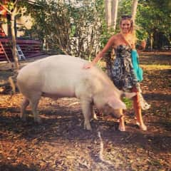 With my friend's giant pig :)