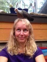 A little Bantam hen balancing on my head