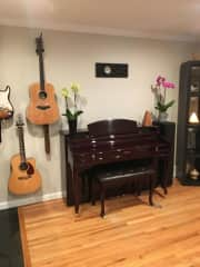 Our instruments in the dining room