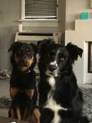 Winston and Baxter