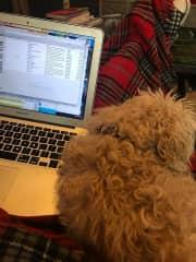 Simone helping me write an article.