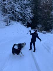 Jason throwing snow balls for Jack and Ruby to catch