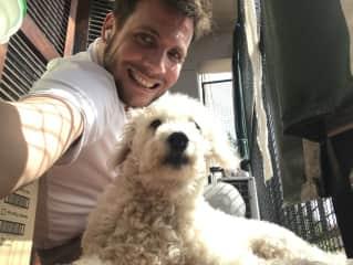Alma, Nico's family dog