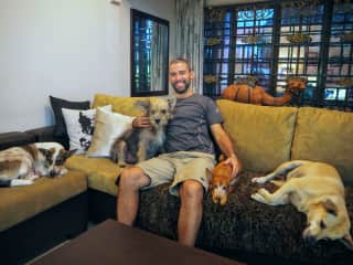 Chilling out with Bandit, Carlos, Julian, and Honey (Subang Jaya, Malaysia, May 2017)