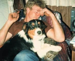 Katie (female Australian Shepherd) jealous of cat's time on Steve's lap