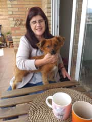 Me with Chewie on recent housesit