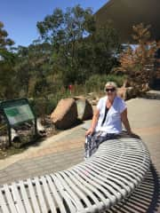 A walk up to Mount Lofty in South Australia