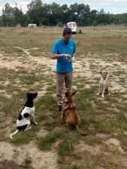 Attila is training and feeding dogs
