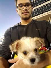 Pinto and I watching a football game.