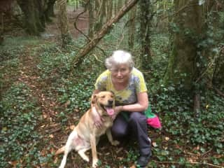 A walk in the woods in Tipperary with  Finn