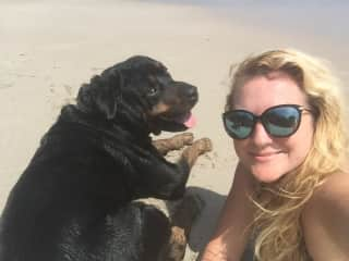 My big boy, Bully, loves the beach