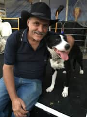 Love these sheep dogs at the Sydney Easter Show (2018).