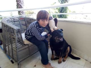 Sebastian while dogsitting Buckley
