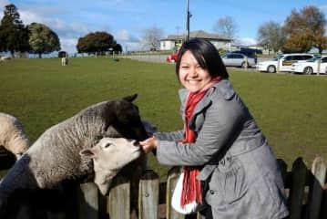 Feeding the sheep in Hobbiton, Matamata, New Zealand sometime in 2011.