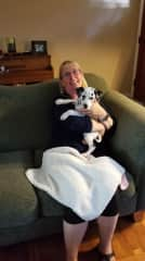 My recent sit with, Aubon the Dalmatian puppy.