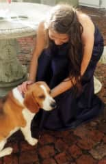 Buddy the beagle. Met in the middle of taking prom photos.