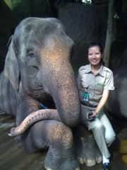 Kezia with one of the many elephants in the Safari Park.
