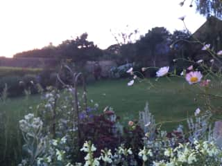 The garden from the house.