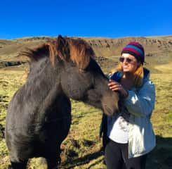 Getting to know a very friendly Icelandic horse! So cool and so sweet