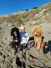 A day at the beach with my favourite Benny and Carley. One of my first housesits in California.
