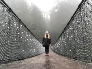 Exploring Vancouver on the Capilano Suspension Bridge