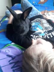 Beau having a cuddle with Twilight our pet rabbit
