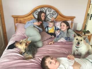 Babysitting and dog sitting