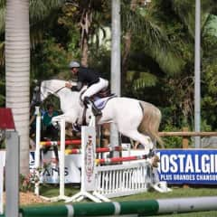 Thierry + Soyeuse in a jumping competition in Guadeloupe
