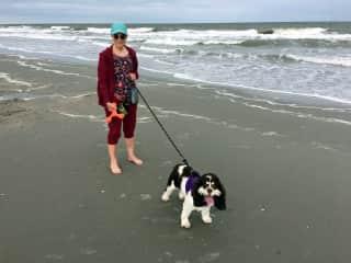 Beach walk w. previous TH.com sitter
