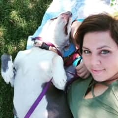 A day at the park with my pitbull, Lila.