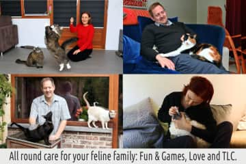 All round care for your feline family. Fun & Games, Love and TLC