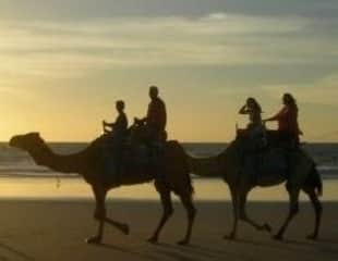 The Shearn family riding camels, Broome, Western AustraliaBroome, Western Australia. A gorgeous way to spend the afternoon.