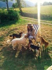 Happy doggies, happy life.