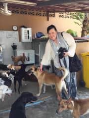 Päivi visiting Boddhi Dog Shelter in Phuket, Thailand.