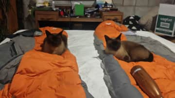 Twinning on our sleeping bags