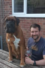 Buddy thinks he's a little lap dog, he just wants to sit on you or by you every chance he gets. If your in a beer garden he always wants to sit next to you.