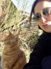 This is Tommy, he died in December 2020. He was our family cat for 15.5 years. I took care of him when my parents were on Holidays and also while temporary living there between travels. We were great buddies.